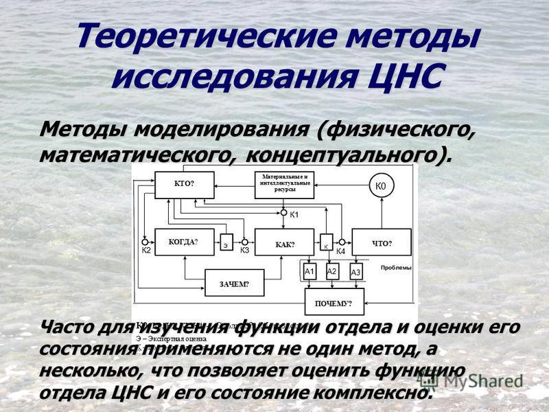 Теоретические методы исследования ЦНС Методы моделирования (физического, математического, концептуального). Часто для изучения функции отдела и оценки его состояния применяются не один метод, а несколько, что позволяет оценить функцию отдела ЦНС и ег