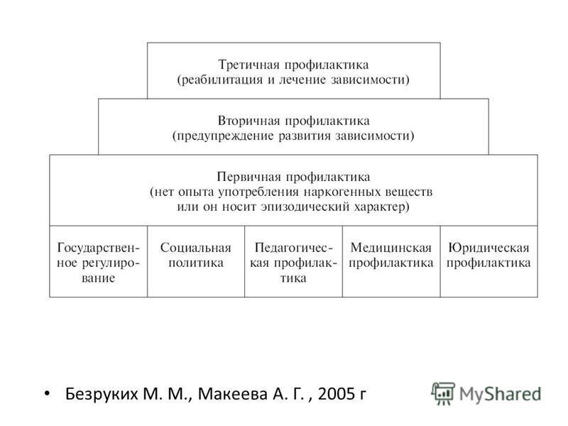 Безруких М. М., Макеева А. Г., 2005 г