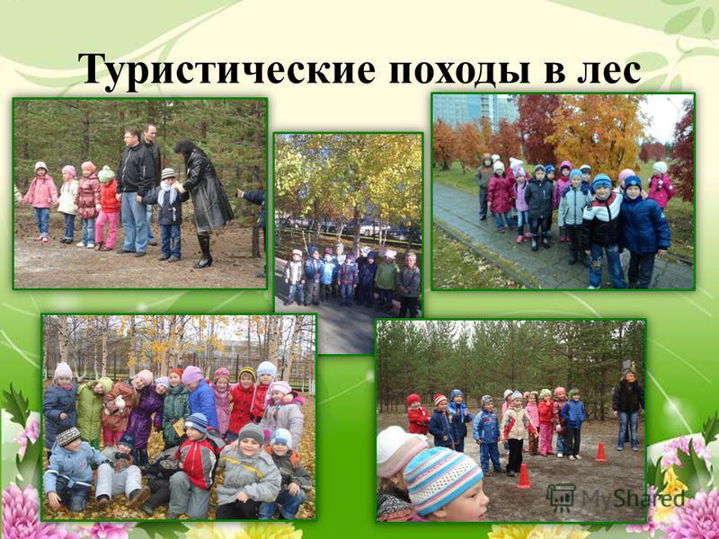 Туристические походы в лес