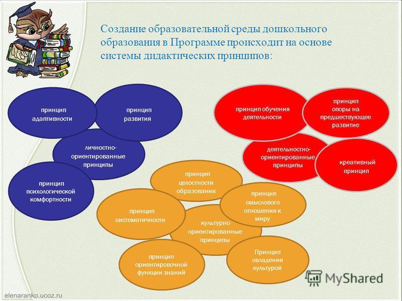 Создание образовательной среды дошкольного образования в Программе происходит на основе системы дидактических принципов: деятельностно- ориентированные принципы принцип обучения деятельности личностно- ориентированные принципы культурно- ориентирован