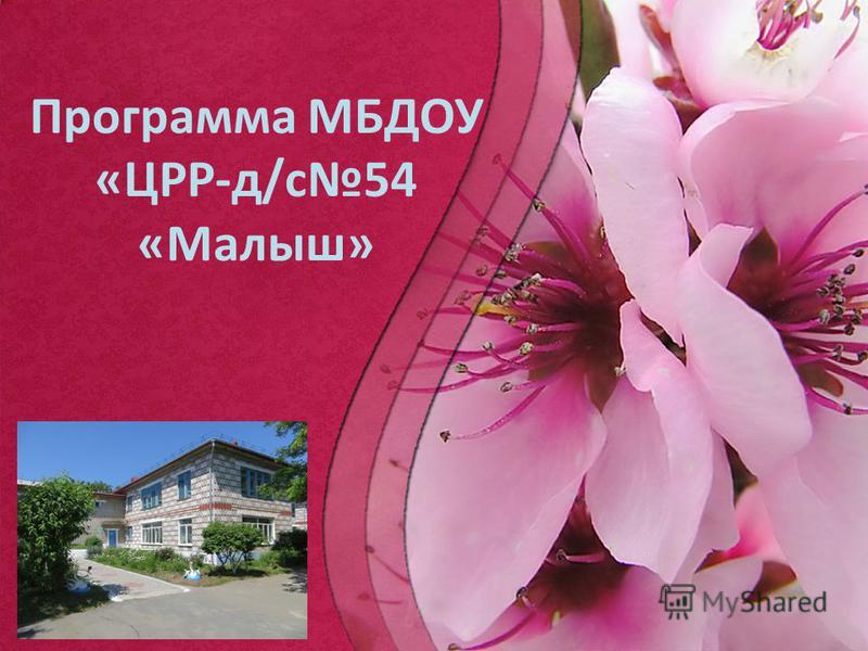 ProPowerPoint.Ru Программа МБДОУ «ЦРР-д/с 54 «Малыш»