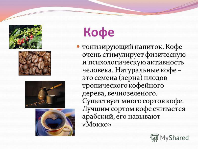 Кофе тонизирующий напиток. Кофе очень стимулирует физическую и психологическую активность человека. Натуральные кофе – это семена (зерна) плодов тропического кофейного дерева, вечнозеленого. Существует много сортов кофе. Лучшим сортом кофе считается