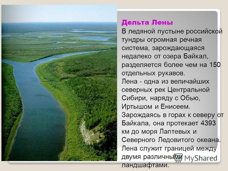Дельта Лены В ледяной пустыне российской тундры огромная речная система, зарождающаяся недалеко от озера Байкал, разделяется более чем на 150 отдельных рукавов. Лена - одна из величайших северных рек Центральной Сибири, наряду с Обью, Иртышом и Енисе