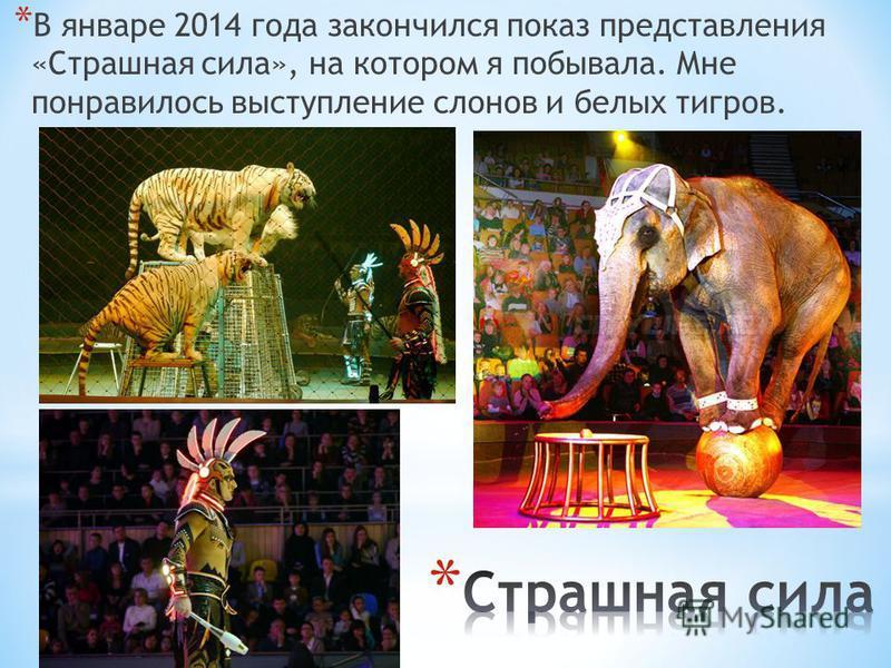 * В январе 2014 года закончился показ представления «Страшная сила», на котором я побывала. Мне понравилось выступление слонов и белых тигров.