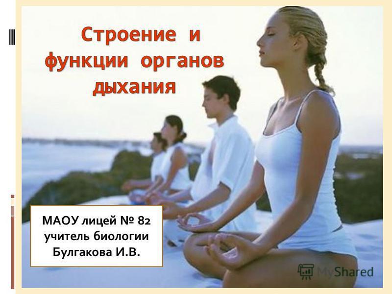 МАОУ лицей 82 учитель биологии Булгакова И.В.