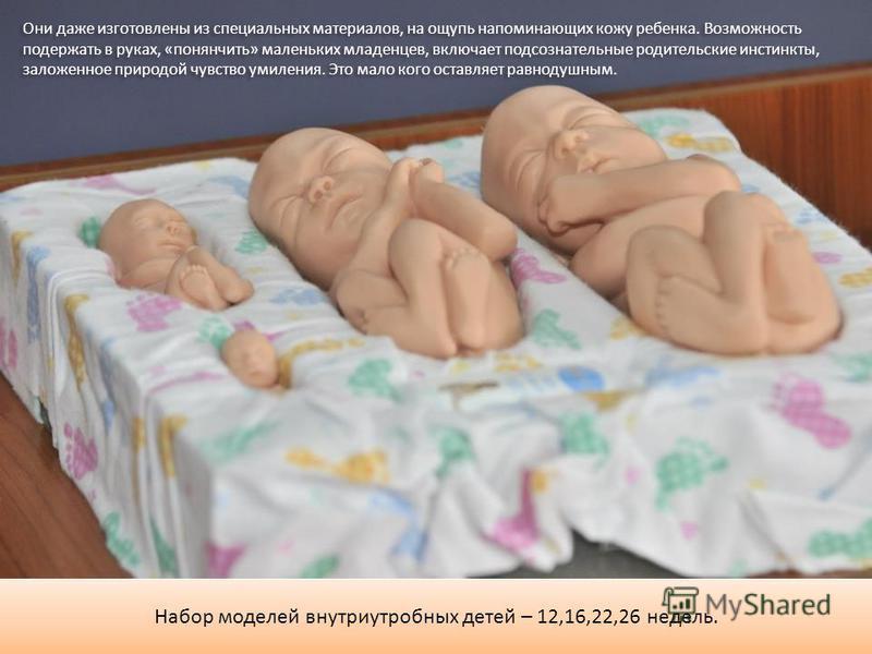 Набор моделей внутриутробных детей – 12,16,22,26 недель. Они даже изготовлены из специальных материалов, на ощупь напоминающих кожу ребенка. Возможность подержать в руках, «понянчить» маленьких младенцев, включает подсознательные родительские инстинк
