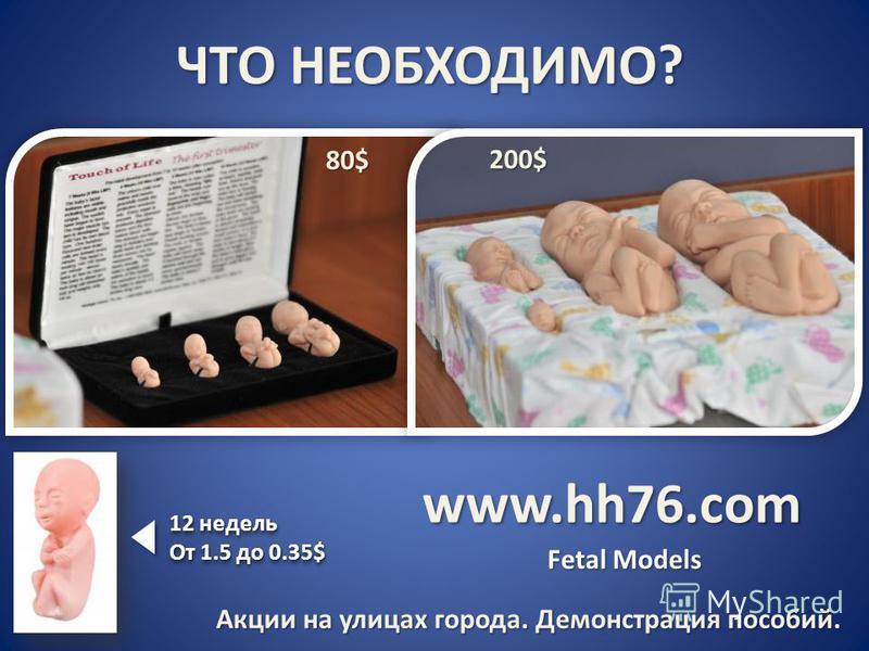 ЧТО НЕОБХОДИМО? www.hh76. com 80$80$80$80$ 200$ Fetal Models 12 недель От 1.5 до 0.35$