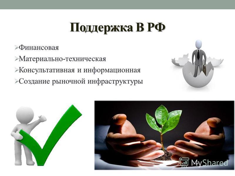 Поддержка В РФ Финансовая Материально-техническая Консультативная и информационная Создание рыночной инфраструктуры