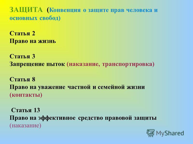 ЗАЩИТА ( Конвенция о защите прав человека и основных свобод) Статья 2 Право на жизнь Статья 3 Запрещение пыток (наказание, транспортировка) Статья 8 Право на уважение частной и семейной жизни (контакты) Статья 13 Право на эффективное средство правово