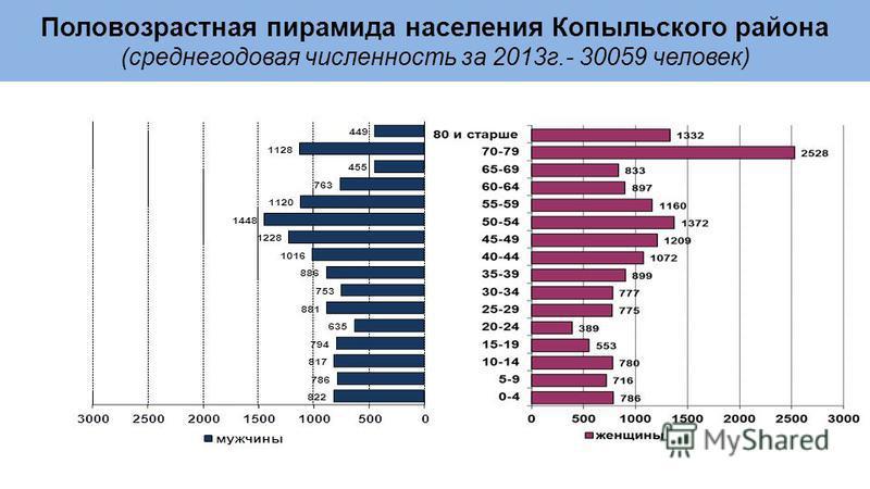 Половозрастная пирамида населения Копыльского района (среднегодовая численность за 2013 г.- 30059 человек)