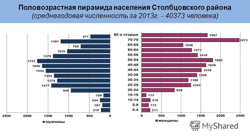 Половозрастная пирамида населения Столбцовского района (среднегодовая численность за 2013 г. - 40373 человека)