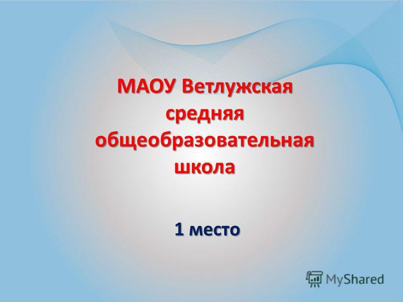 МАОУ Ветлужская средняя общеобразовательная школа 1 место 1 место