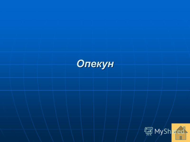 Опекун