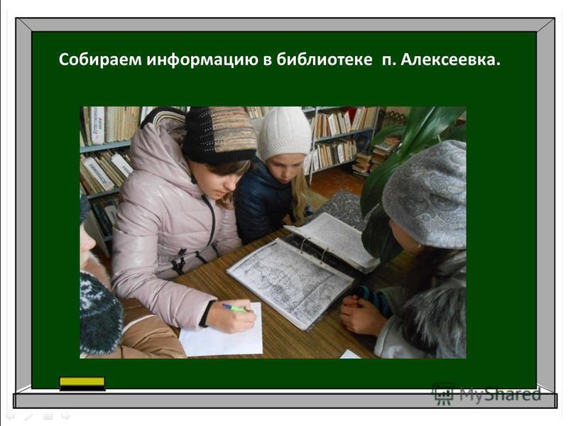 Собираем информацию в библиотеке п. Алексеевка.