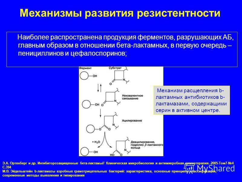 Наиболее распространена продукция ферментов, разрушающих АБ, главным образом в отношении бета-лактамных, в первую очередь – пенициллинов и цефалоспоринов; Э.А. Ортенберг и др. Ингибиторозащищенные бета-лактамы// Клиническая микробиология и антимикроб