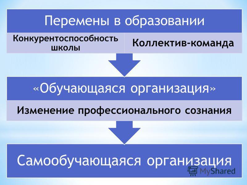 Самообучающаяся организация «Обучающаяся организация» Изменение профессионального сознания Перемены в образовании Конкурентоспособность школы Коллектив-команда