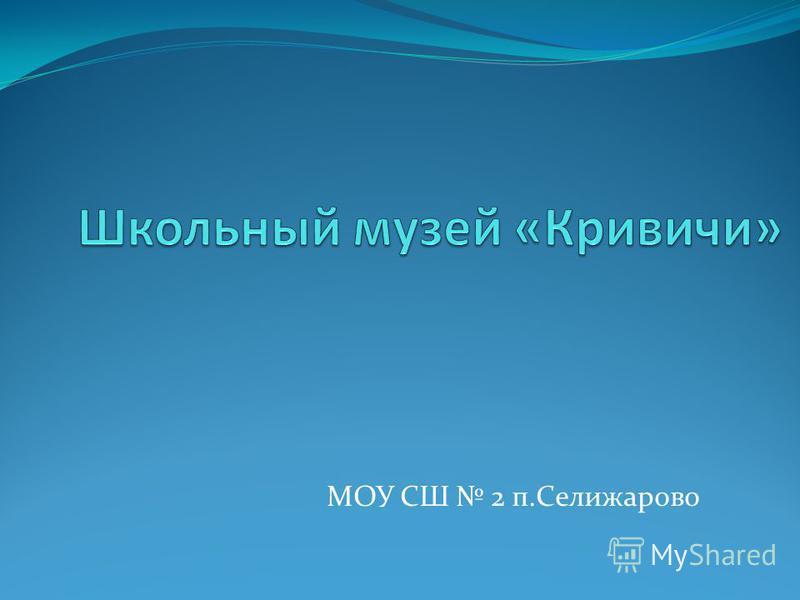 МОУ СШ 2 п.Селижарово