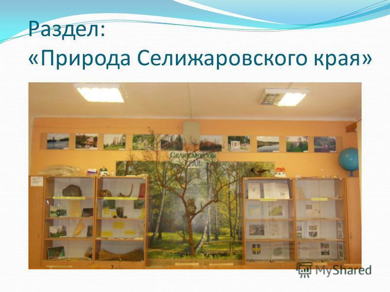 Раздел: «Природа Селижаровского края»