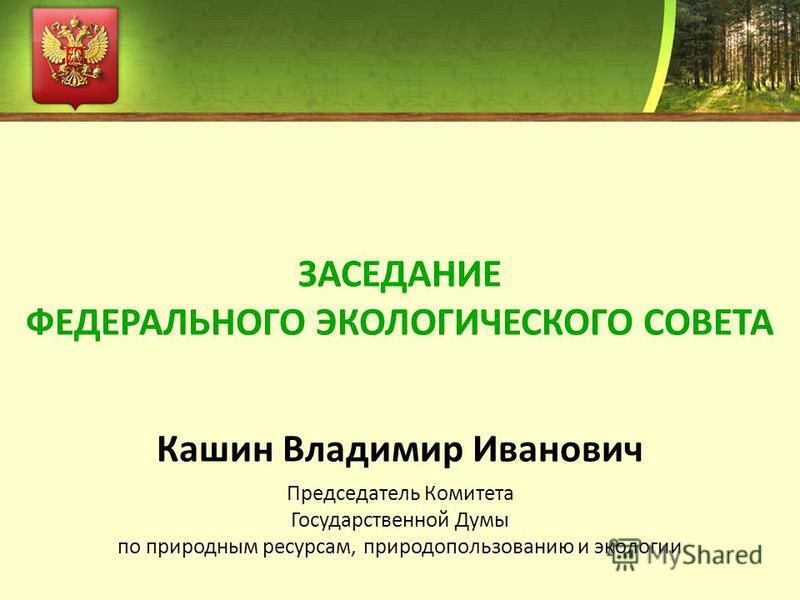 Кашин Владимир Иванович Председатель Комитета Государственной Думы по природным ресурсам, природопользованию и экологии ЗАСЕДАНИЕ ФЕДЕРАЛЬНОГО ЭКОЛОГИЧЕСКОГО СОВЕТА