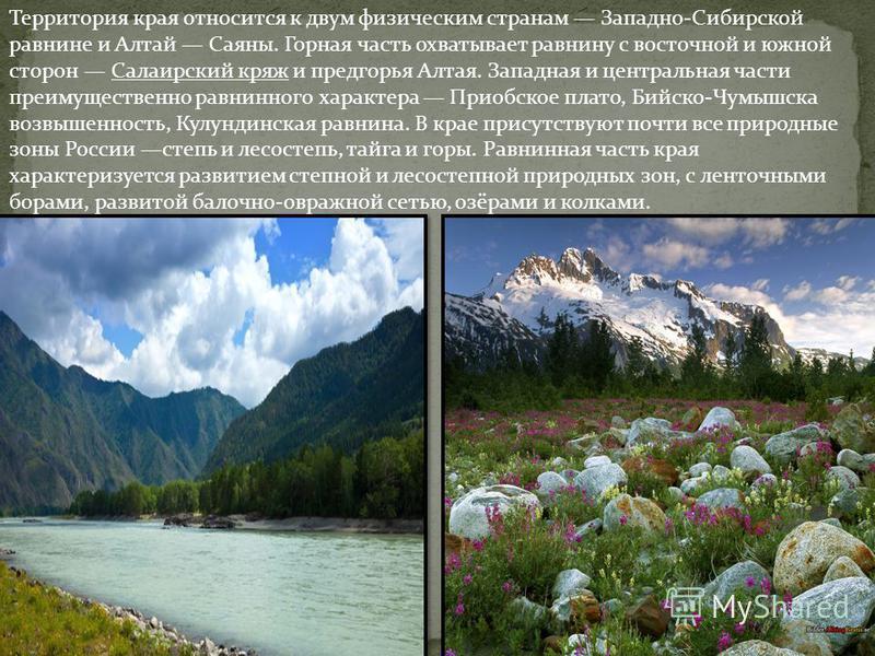 Территория края относится к двум физическим странам Западно-Сибирской равнине и Алтай Саяны. Горная часть охватывает равнину с восточной и южной сторон Салаирский кряж и предгорья Алтая. Западная и центральная части преимущественно равнинного характе