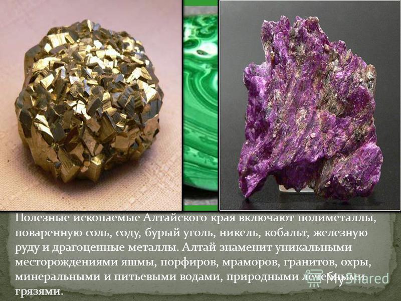 Полезные ископаемые Алтайского края включают полиметаллы, поваренную соль, соду, бурый уголь, никель, кобальт, железную руду и драгоценные металлы. Алтай знаменит уникальными месторождениями яшмы, порфиров, мраморов, гранитов, охры, минеральными и пи