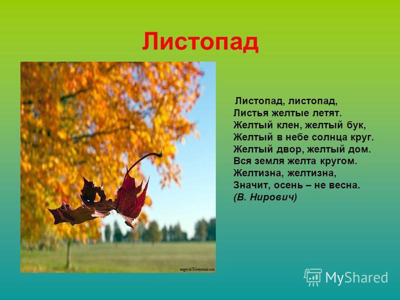 Листопад, листопад, Листья желтые летят. Желтый клен, желтый бук, Желтый в небе солнца круг. Желтый двор, желтый дом. Вся земля желта кругом. Желтизна, желтизна, Значит, осень – не весна. (В. Нирович) Листопад