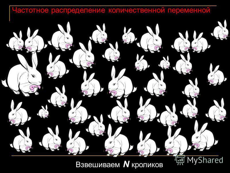 Частотное распределение количественной переменной Взвешиваем N кроликов