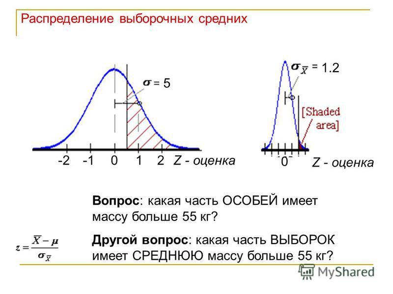 Распределение выборочных средних 0 5 12-2Z - оценка 0 1.2 Z - оценка Вопрос: какая часть ОСОБЕЙ имеет массу больше 55 кг? Другой вопрос: какая часть ВЫБОРОК имеет СРЕДНЮЮ массу больше 55 кг?