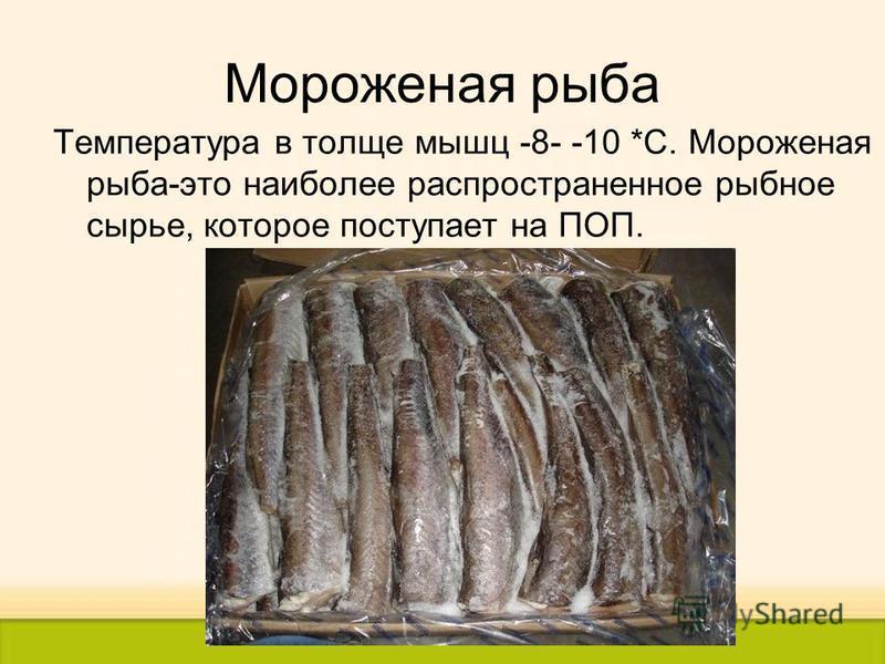 Мороженая рыба Температура в толще мышц -8- -10 *С. Мороженая рыба-это наиболее распространенное рыбное сырье, которое поступает на ПОП.