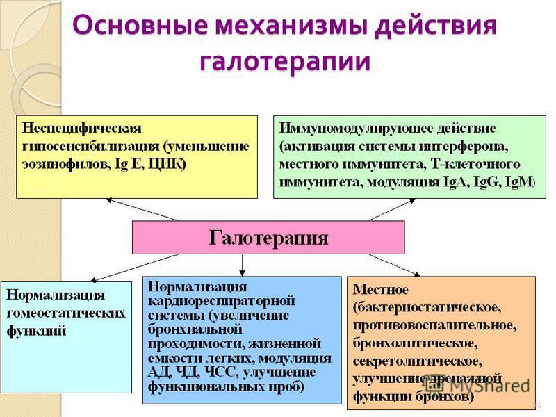 Основные механизмы действия галотерапии 24