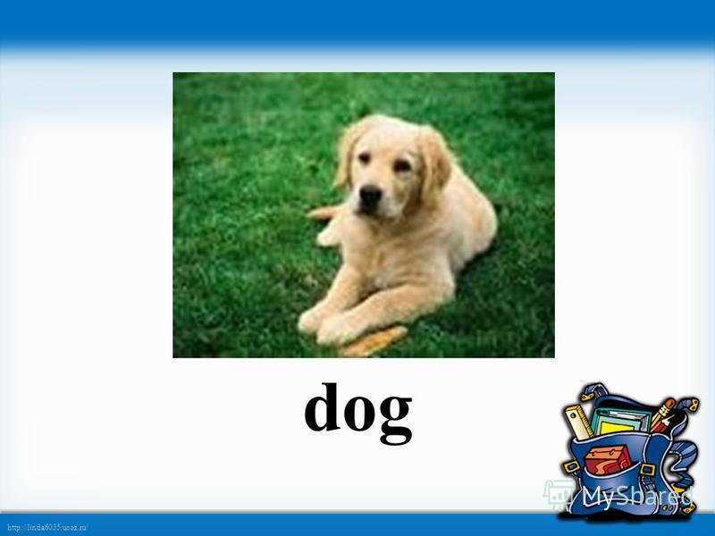http://linda6035.ucoz.ru/ dog