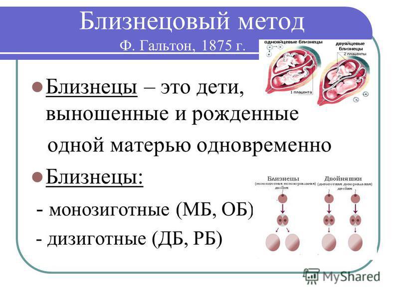 Близнецовый метод Ф. Гальтон, 1875 г. Близнецы – это дети, выношенные и рожденные одной матерью одновременно Близнецы: - монозиготные (МБ, ОБ) - дизиготные (ДБ, РБ)