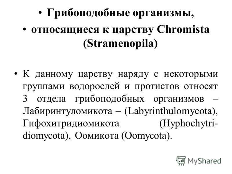 Грибоподобные организмы, относящиеся к царству Chromista (Stramenopila) К данному царству наряду с некоторыми группами водорослей и протистов относят 3 отдела грибоподобных организмов – Лабиринтуломикота – (Labyrinthulomycota), Гифохитридиомикота (Hy