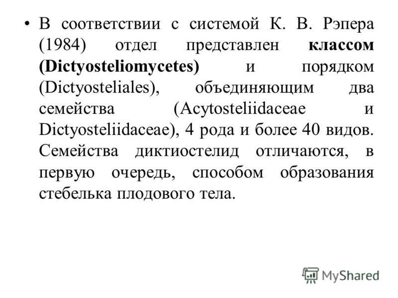 В соответствии с системой К. В. Рэпера (1984) отдел представлен классом (Dictyosteliomycetes) и порядком (Dictyosteliales), объединяющим два семейства (Acytosteliidaceae и Dictyosteliidaceae), 4 рода и более 40 видов. Семейства диктиостелид отличаютс