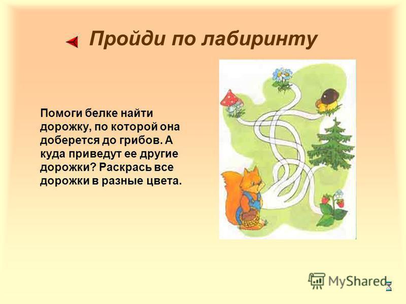Пройди по лабиринту Помоги белке найти дорожку, по которой она доберется до грибов. А куда приведут ее другие дорожки? Раскрась все дорожки в разные цвета.