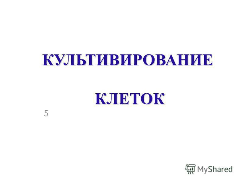 КУЛЬТИВИРОВАНИЕ КЛЕТОК 5