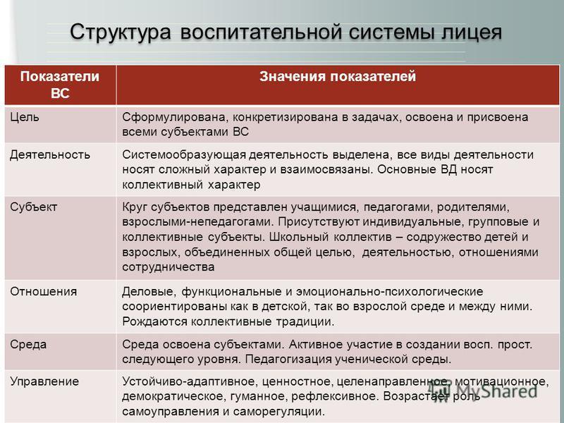 www.lyceum87.nnov.ru Показатели ВС Значения показателей Цель Сформулирована, конкретизирована в задачах, освоена и присвоена всеми субъектами ВС Деятельность Системообразующая деятельность выделена, все виды деятельности носят сложный характер и взаи