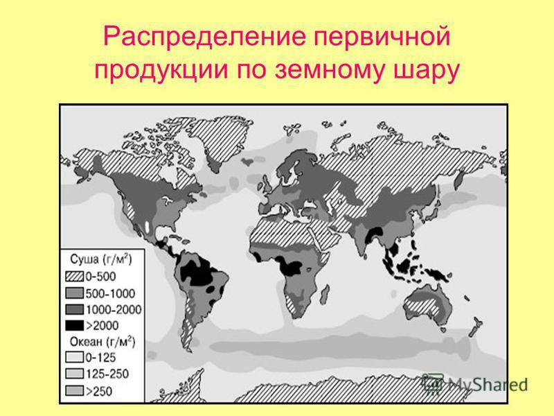 Распределение первичной продукции по земному шару