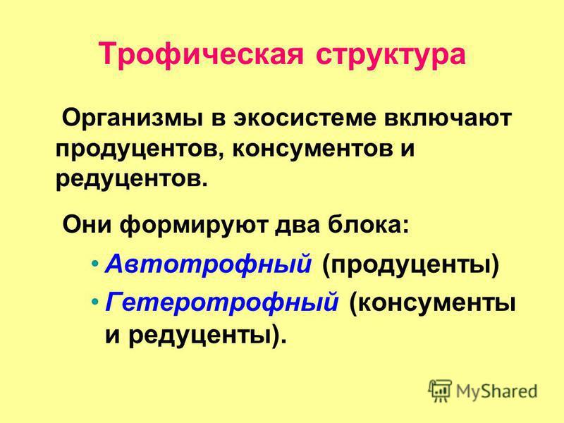 Литотрофный