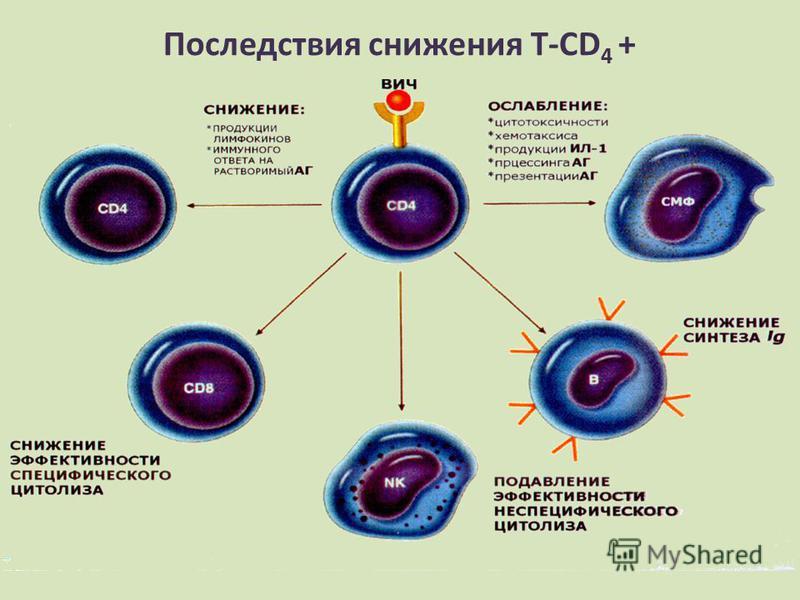 Последствия снижения Т-CD 4 +
