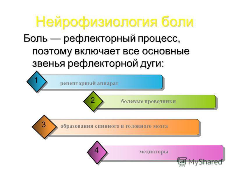 Боль рефлекторный процесс, поэтому включает все основные звенья рефлекторной дуги: Нейрофизиология боли 1 рецепторный аппарат болевые проводники 2 образования спинного и головного мозга 3 медиаторы 4