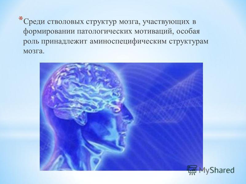 * Среди стволовых структур мозга, участвующих в формировании патологических мотиваций, особая роль принадлежит аминоспецифическим структурам мозга.