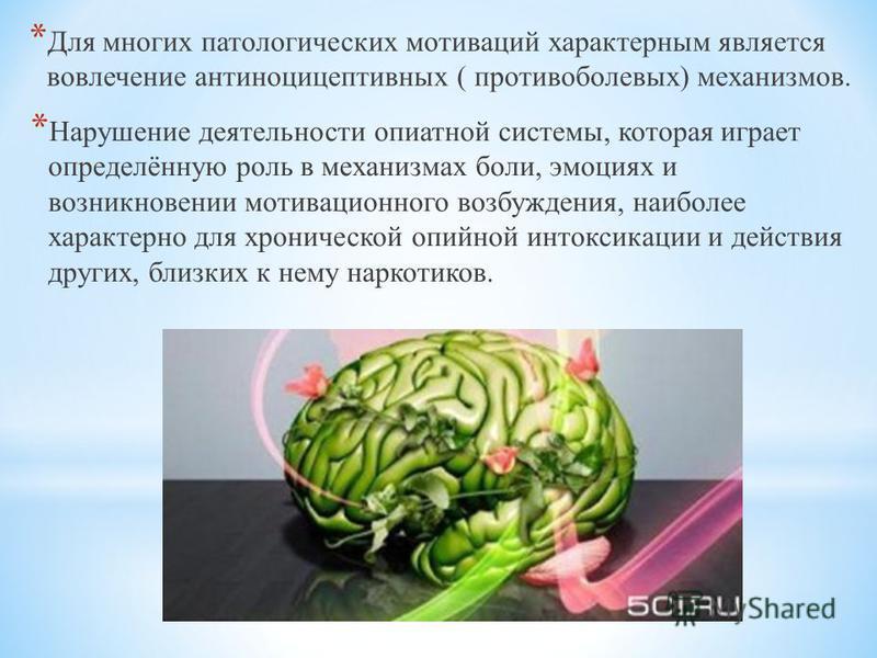 * Для многих патологических мотиваций характерным является вовлечение антиноцицептивных ( противоболевых) механизмов. * Нарушение деятельности опиатной системы, которая играет определённую роль в механизмах боли, эмоциях и возникновении мотивационног