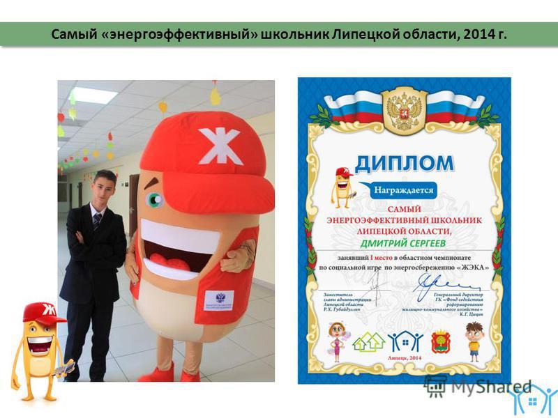 Самый «энергоэффективный» школьник Липецкой области, 2014 г.