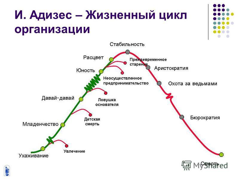 И. Адизес – Жизненный цикл организации