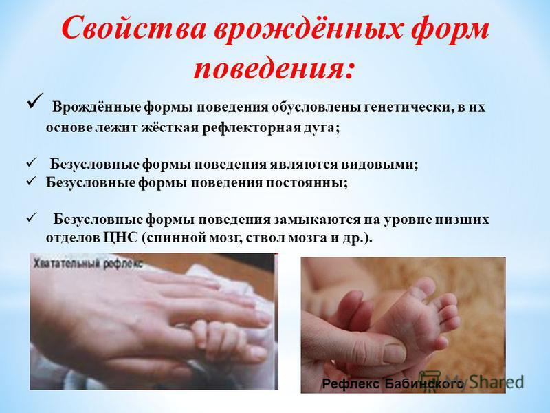 Свойства врождённых форм поведения: Врождённые формы поведения обусловлены генетически, в их основе лежит жёсткая рефлекторная дуга; Безусловные формы поведения являются видовыми; Безусловные формы поведения постоянны; Безусловные формы поведения зам