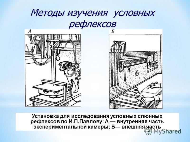 Установка для исследования условных слюнных рефлексов по И.П.Павлову: А внутренняя часть экспериментальной камеры; Б внешняя часть Методы изучения условных рефлексов