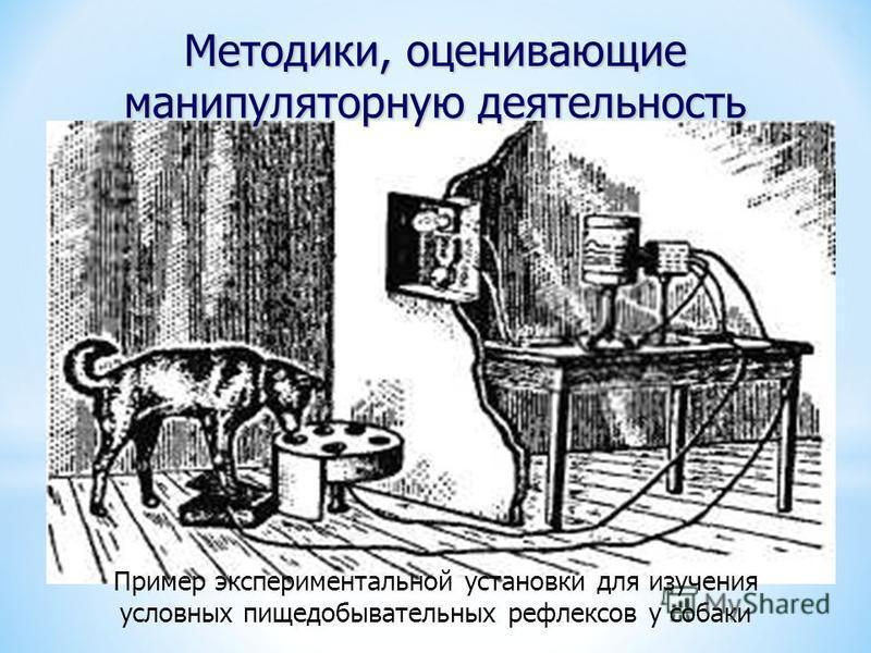 Пример экспериментальной установки для изучения условных пищедобывательных рефлексов у собаки Методики, оценивающие манипуляторную деятельность