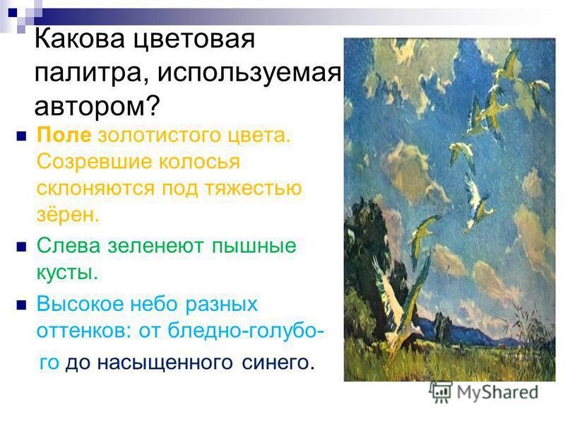 Какова цветовая палитра, используемая автором? Поле золотистого цвета. Созревшие колосья склоняются под тяжестью зёрен. Слева зеленеют пышные кусты. Высокое небо разных оттенков: от бледно-голубо- го до насыщенного синего.