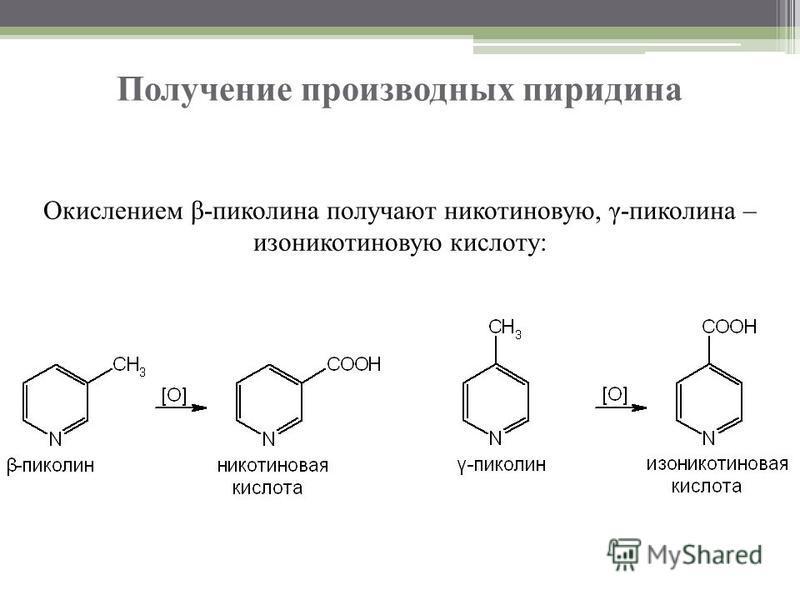 Получение производных пиридина Окислением β-пиколина получают никотиновую, γ-пиколина – изоникотиновую кислоту: